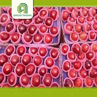 good brand fresh top red huaniu apples chinese mature fruit with low price