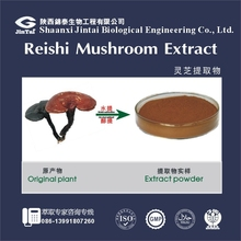 reliable supplier hot sell fresh raw material reishi extract mushroom 30%-50% polysaccharide
