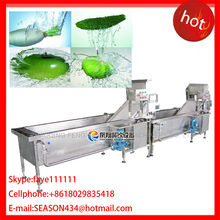 DBWA-1000 Automatic Electrical Vegetable & Disinfection Line, vegetable and fruit Yellow bean sprouts washing machine