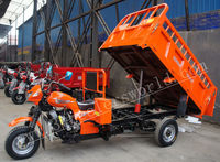 Chinese Hot Sale Hydraulic Cargo Tricycle Three Wheel Motorcycle
