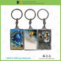 keychain with 3D sticker,key holder with 3D lenticular sticker,keyring with 3D lenticular picture