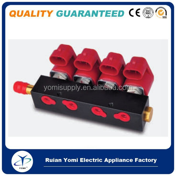 Bus Taxi Truck Vehicle cng/lpg injector common rail valtek type common rail parts 4 6 8 cylinder Auto Injection rail gas