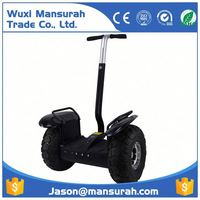new design ski scooter, two wheeled electrice chariot scooter for adults