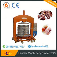 Leader best selling grape juicer machine with large output