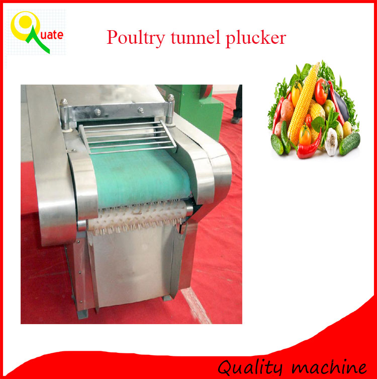 Commercial electric vegetable fruit dicing machine / multifunctional vegetable cutter
