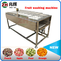 2016 New Multifunction Stainless Steel Electric Fruit Apple Peeler Potato Peeling Machine Automatic