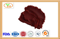 wholesale canned tomato paste,chinese plant