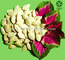 Raw Yellow Pumpkin Seeds in shell