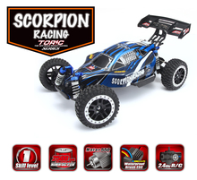 Hot Sale Remo 1/8 SCALE ELECTRIC 4WD 2.4GHZ RC OFF-ROAD BRUSHLESS TRUGGY