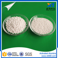 XINTAO MSDS activated alumina