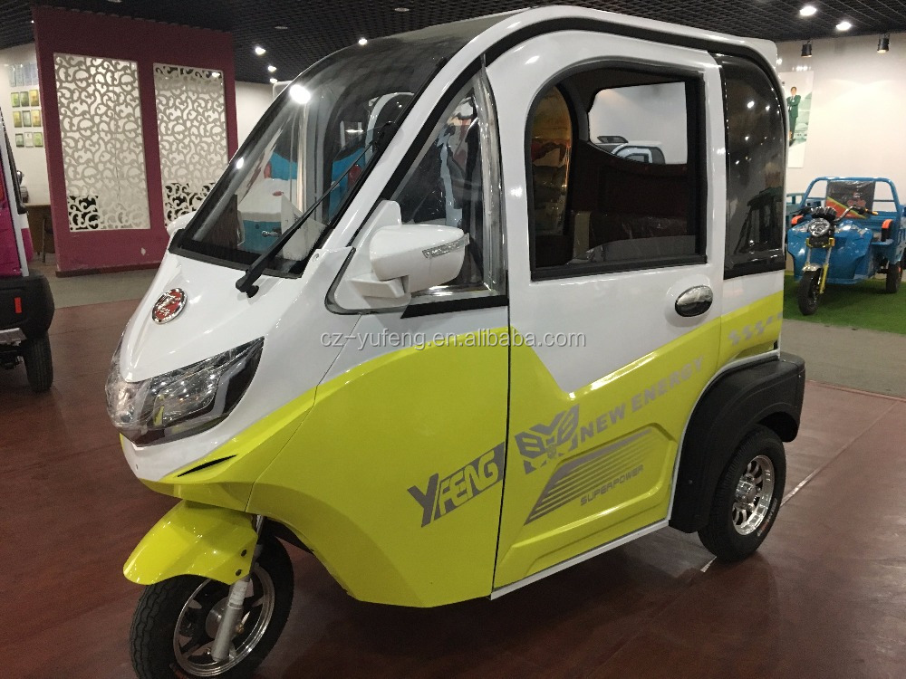 family use electric small car