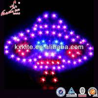 Kite with LED Lights
