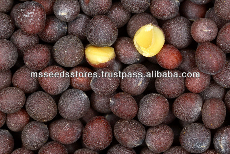 Best Quality Black Mustard Seeds