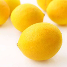 Top Quality for lemon sale Citrus fruit in bulk from egypt