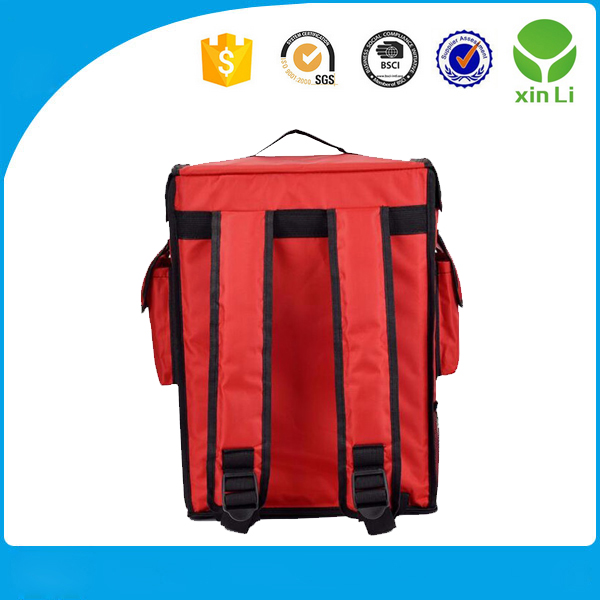 Customized Insualted thermal backpack bag for frozen food