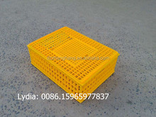 plastic chicken transport cage , strong poultry transport crates, ( lydia chang 0086.15965977837)