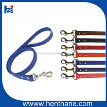 colorful waterproof leash for dog