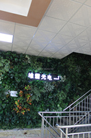 Most realistic waterproof artificial plant wall, green wall for outdoor landscaping with good price