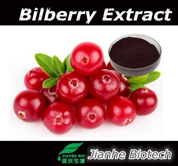 Antioxidant Function and Capsules Dosage Form blueberry bilberry With Berry And 100% natural blueberry bilberry extract powder