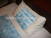 Summer comfortable ice pillow