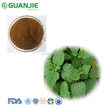 GMP factory supply lemon balm leaf extract