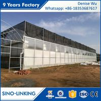 SINOLINKING Multi Span hydroponic galvanized steel pipe used greenhouse structure for sale