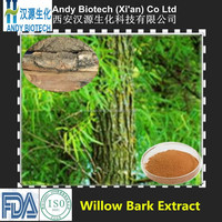 Pure Natural Hot Selling Salicin HPLC 25% White Willow Bark Extract Powder