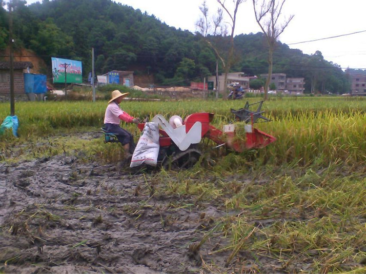 China direct factory supply paddy harvester philippines