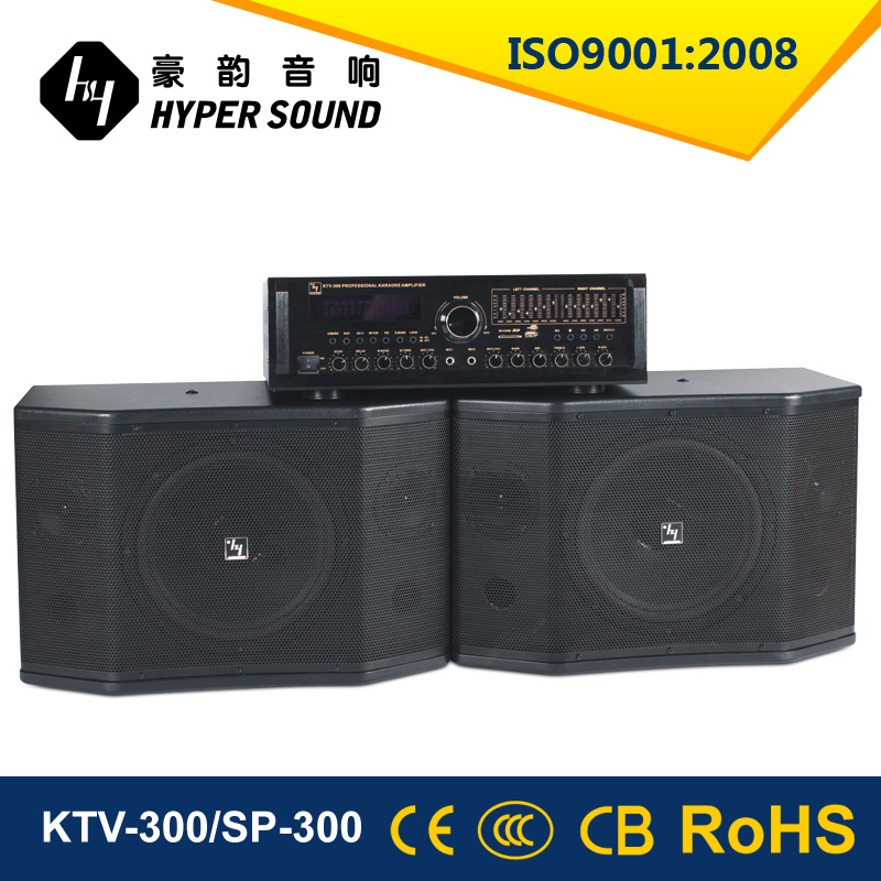 High quality Black Painting KTV Speaker 10inch woofer