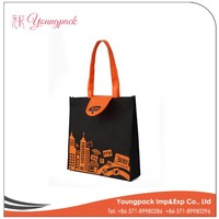 OEM High Quality Nonwoven Foldable Shopping Bag