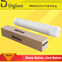 General Use spring foam mattress boxspring beds