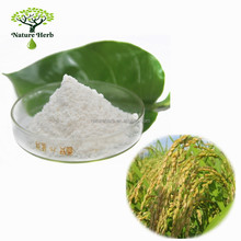 Organic Skin Care Ingredient Rice Bran Extract 99% Ferulic Acid