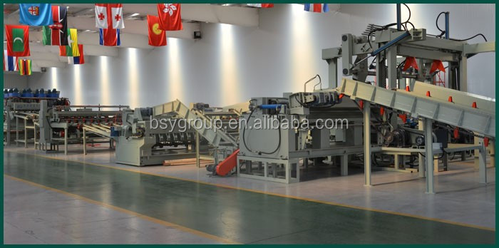 China Plywood Manufacturing Plant/Plywood Production Line