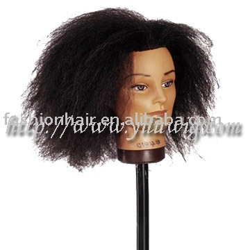 YL-0351,2013 china wholesale new product human hair training mannequin head & styling head hair products