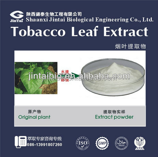 natural 90%-99.9% solanesol powder tobacco leaf extract