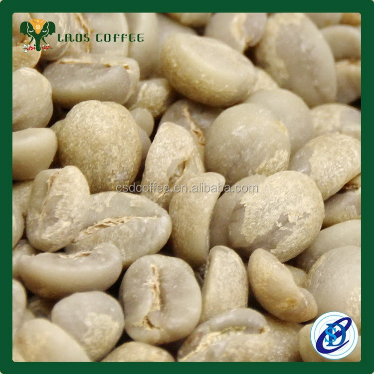 On sale 3.59usd GradeAA green Arabica Yunnan coffee bean