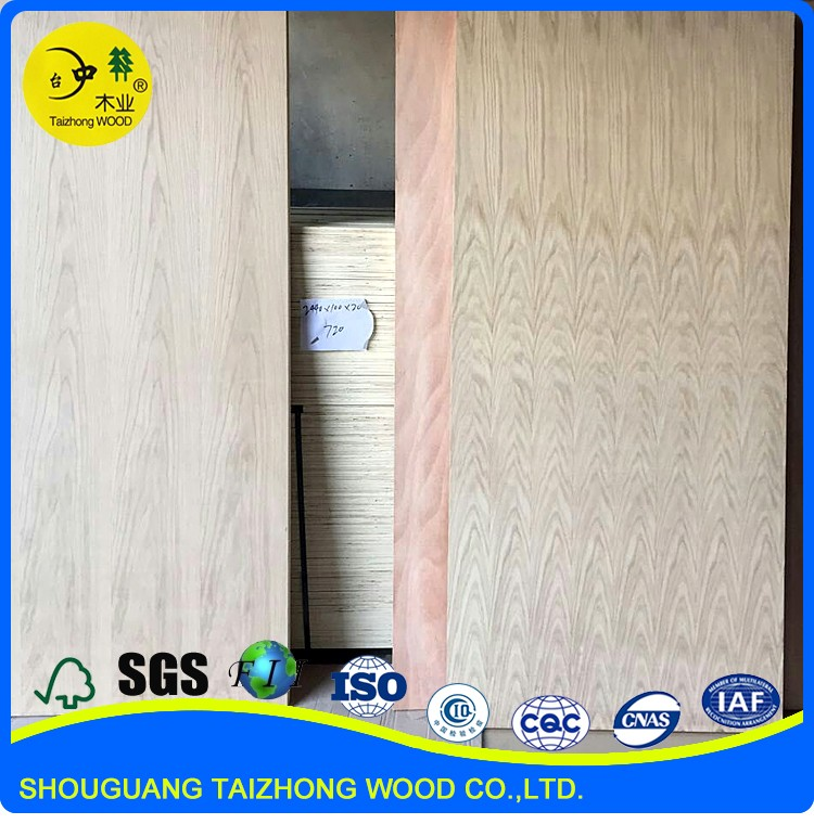 China popular white primer flush door