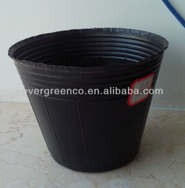 black plastic pots used for blueberry tree,grace tree cuttage