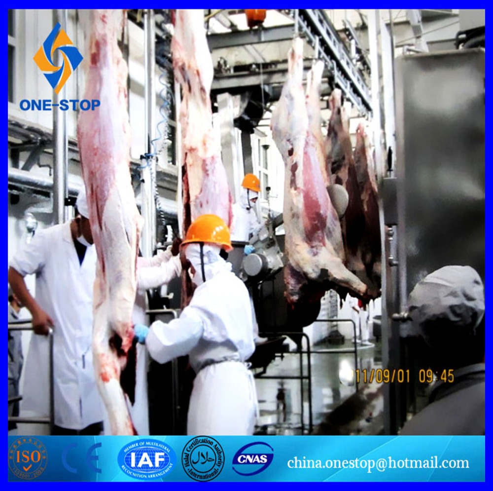 Cattle Abattoir Halal Abattoir Hoisting Machine Meat Hooks Halal Method Slaughter for Cow Machinery Equipment Line