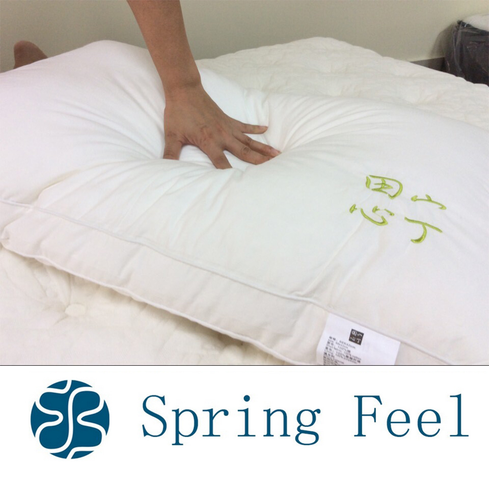 5 stars hotel pocket spring pillow with cheaper price