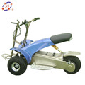 EEC 1000W GOLF CRUISER