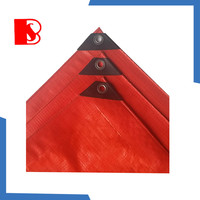 baosheng tarpaulin in standard size and birthday tarpaulin sizes, also hot sale military tarpaulin