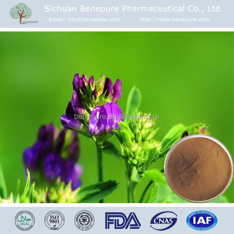 Natural Medicago sativa Alfalfa Saponin extract for laxative and diuretic