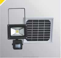Ningbo wholesale high quality and competitive price 10W Rechargeable solar sensor light