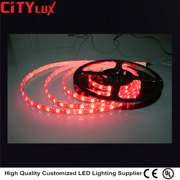 Double Row IP45 SMD 3528 LED specifications 12V 24V Flexible Strip Light