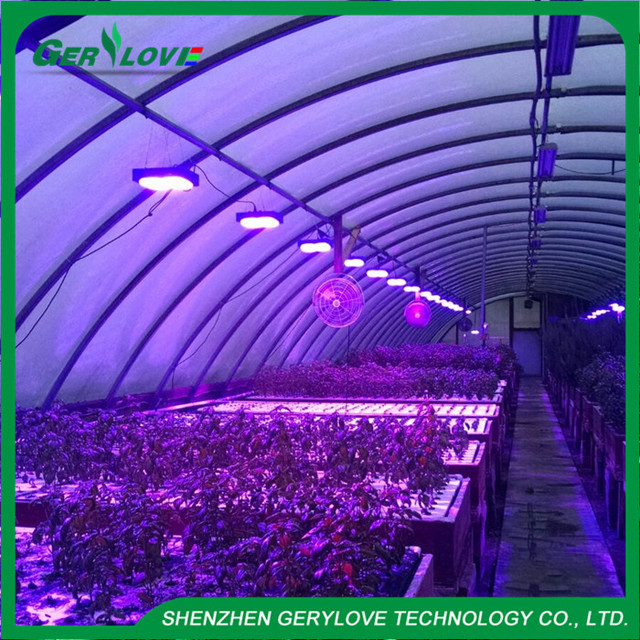 full spectrum / red blue only 300w grow led herb led grow light greenhouse