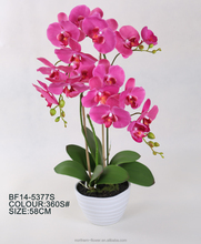 wholesale fashionable pink artificial butterfly orchid flower with ceramic pot for decoration