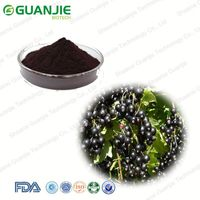 ISO Manufacturer Wholesale Best Price Organic Black Currant Extract Powder