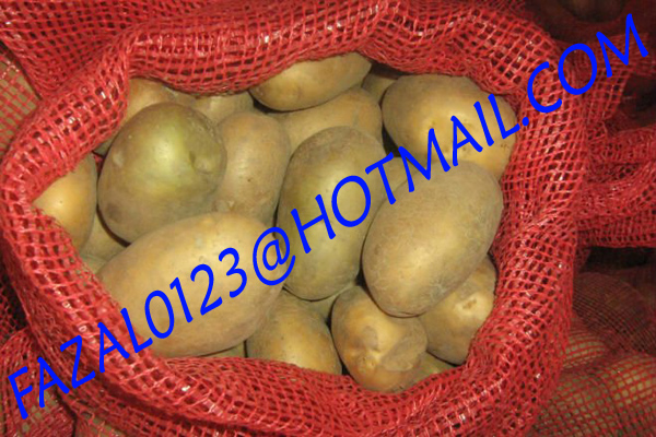 BANGLADESHI HIGH QUALITY FRESH GRANOLA POTATO AND DIAMOND POTATO FROM EXPORT TRADE ASSOCIATE WITH CHEAP PRICE