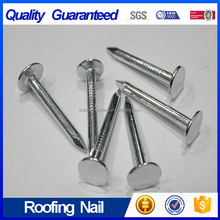 Galvanized Flat Head Clout Roofing Nail with High Quality
